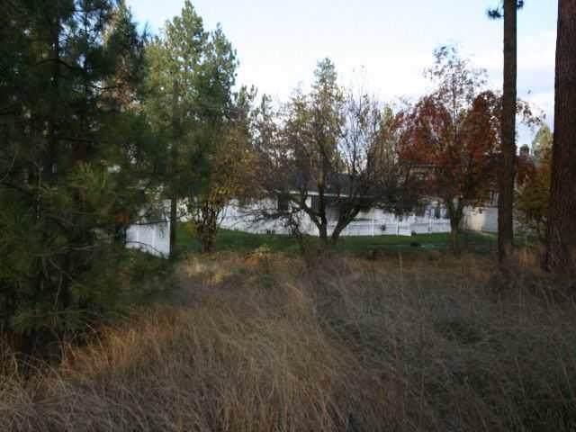3800 E 10th Ave, Spokane, WA 99202 (#202010628) :: The Spokane Home Guy Group