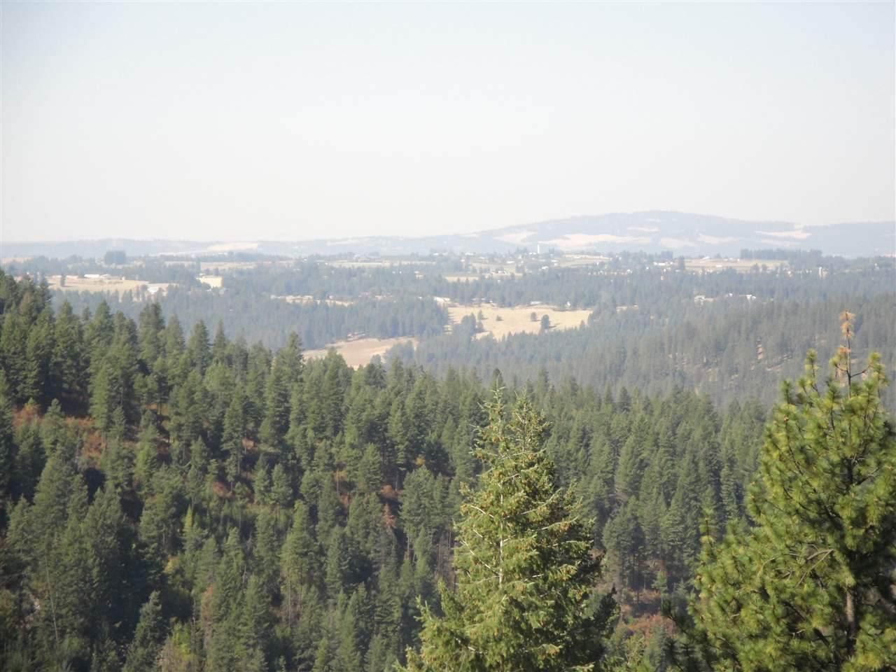 201X1 Mt. Spokane Park Drive Dr - Photo 1