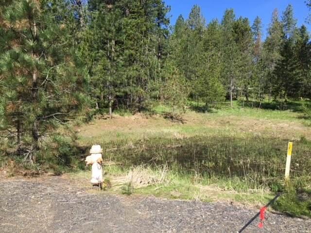 0 Half Moon Lake Ln, Colbert, WA 99005 (#202012206) :: The Spokane Home Guy Group