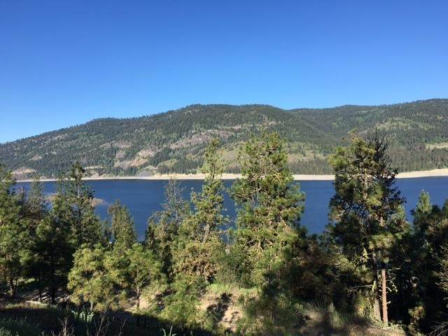 23XX Eagle River Way Lot 2, Kettle Falls, WA 99141 (#202012728) :: Top Agent Team