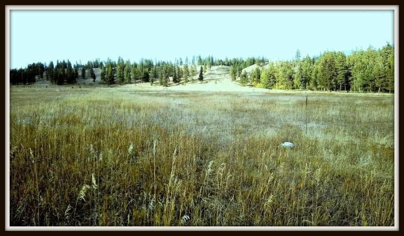 620 K Williams Lake Rd - Photo 1