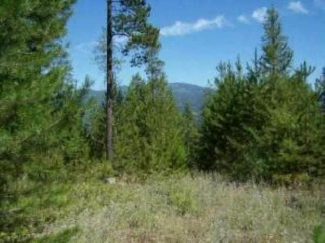 Lot 9 Greenhouse Rd, Ione, WA 99139 (#202014051) :: RMG Real Estate Network