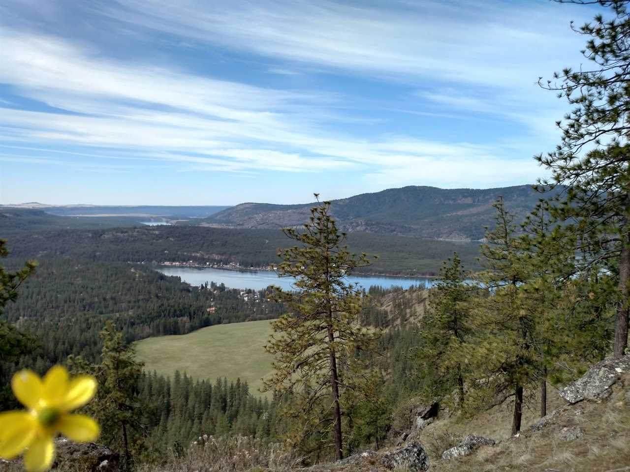 XX Saddle Mountain Way - Photo 1