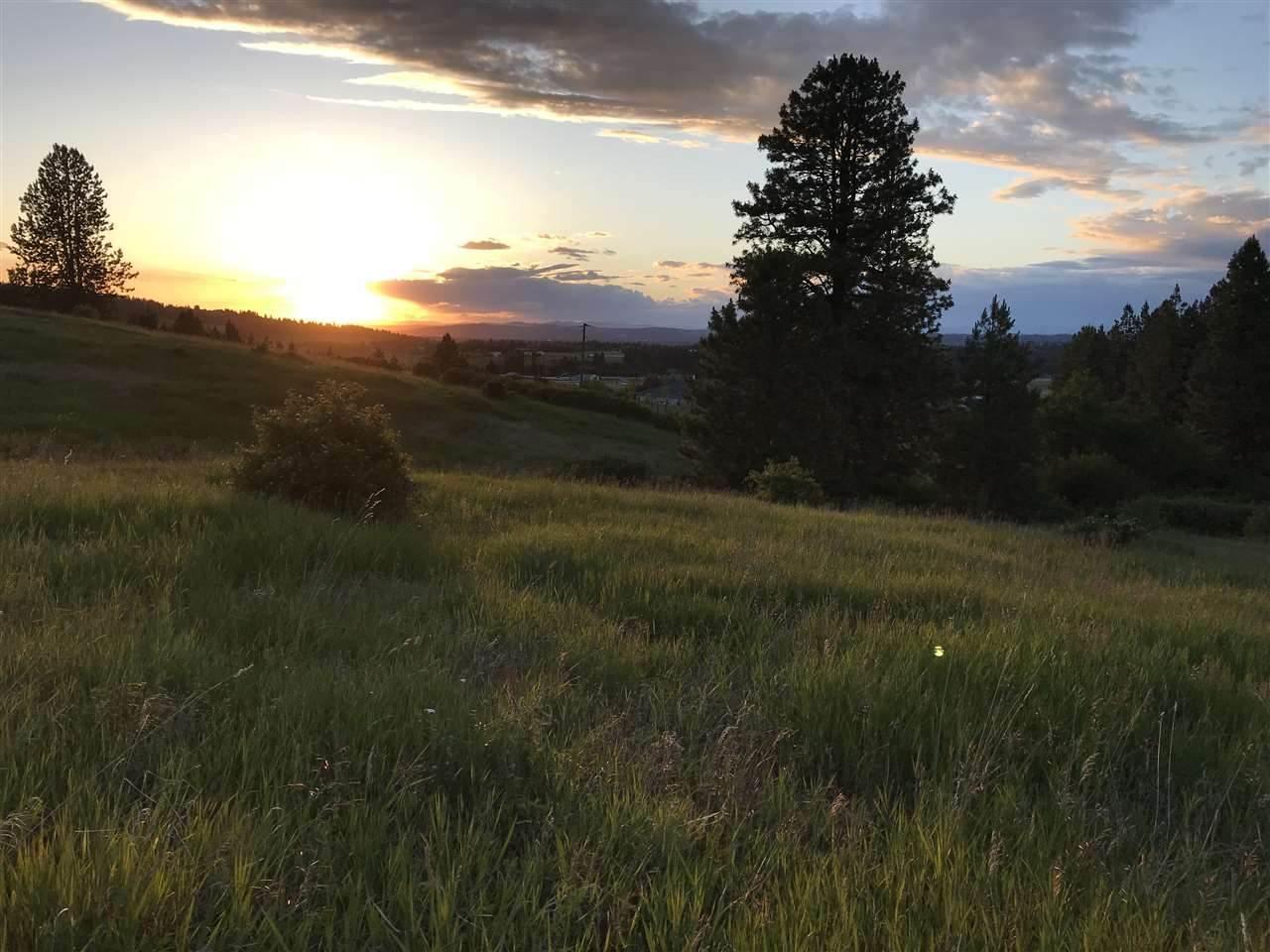 6611 Saddle Ridge Rd - Photo 1
