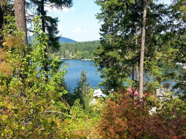 000 Larson Beach Rd, Loon Lake, WA 99148 (#202014926) :: Chapman Real Estate