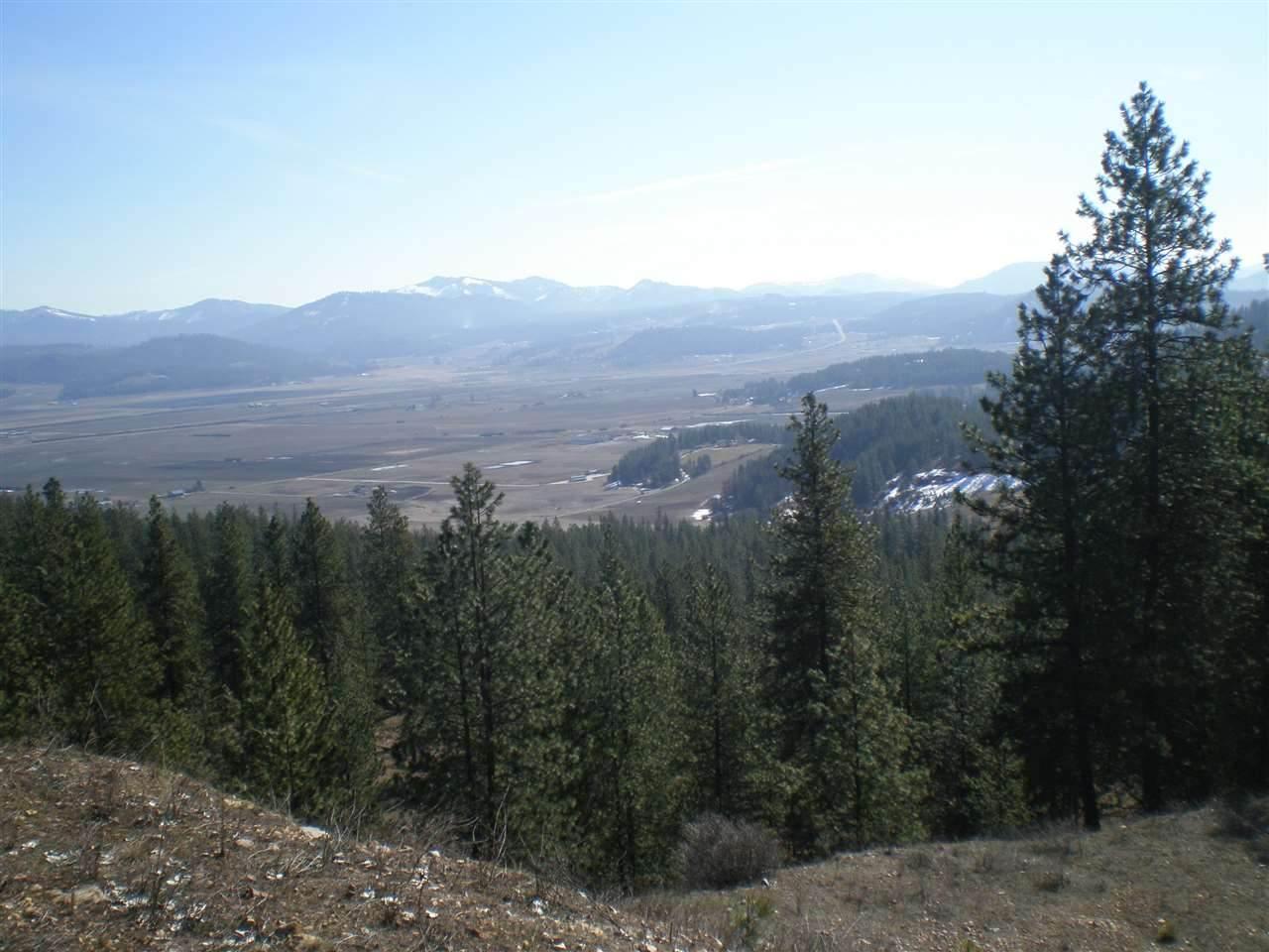 261X Pine Top Way - Photo 1