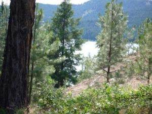 LOT 7 Tillamook Dr, Inchelium, WA 99138 (#202016986) :: The Synergy Group