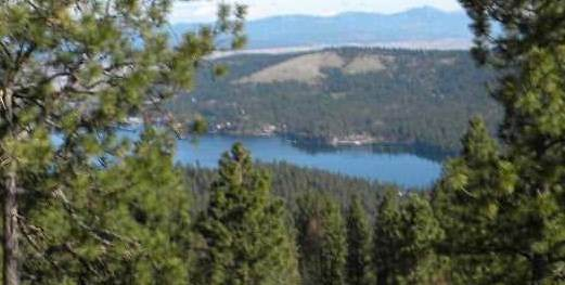 NKA E Broken Lance Ln, Liberty Lake, WA 99019 (#202017449) :: The Synergy Group