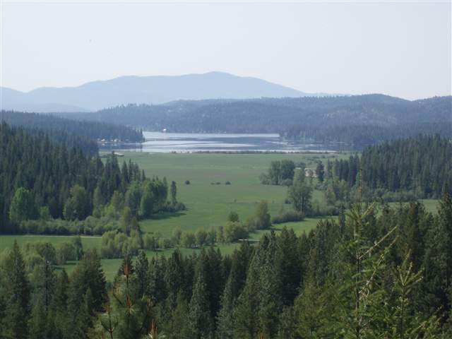 17935 N Thompson Creek Rd, Newman Lake, WA 99025 (#202017915) :: The Spokane Home Guy Group