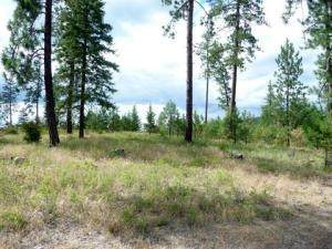 Lot 29 Palmer Loop - Photo 1