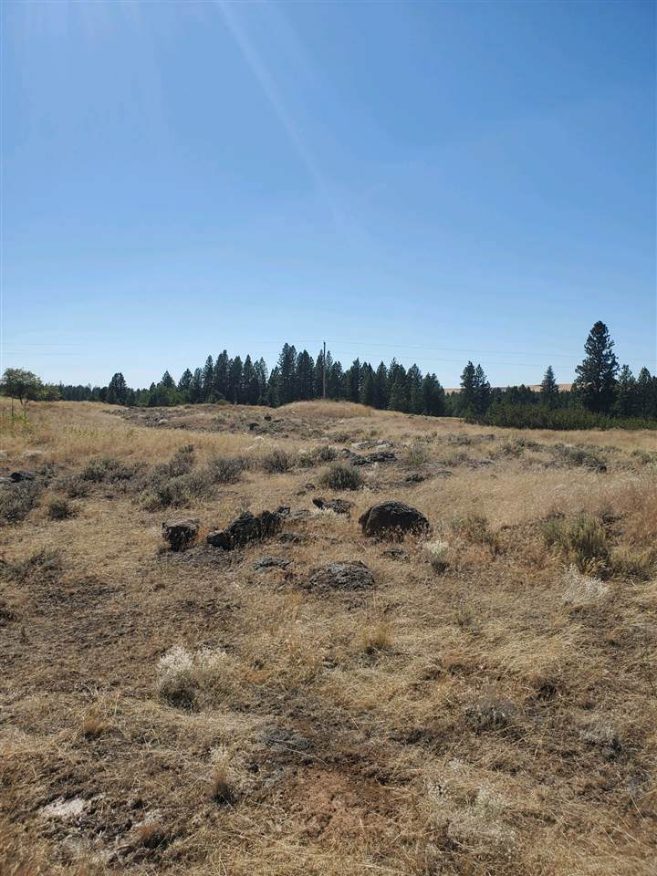 17007 Williams Lake Rd - Photo 1