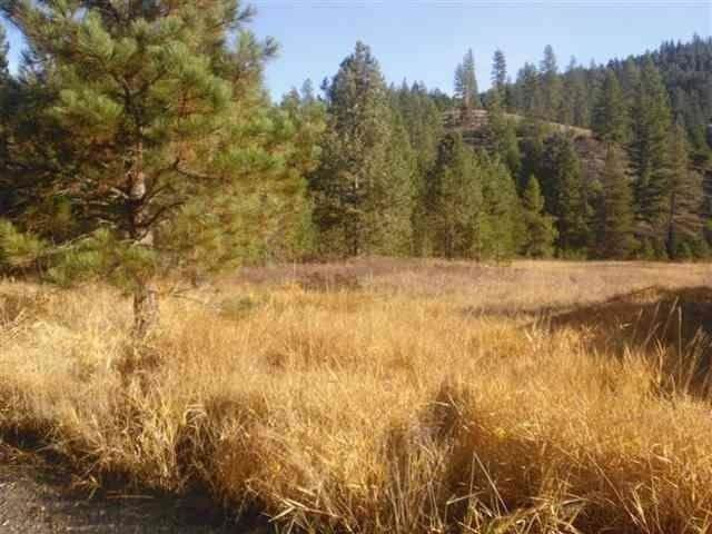 KNA Powers Rd, Loon Lake, WA 99148 (#202022927) :: Freedom Real Estate Group