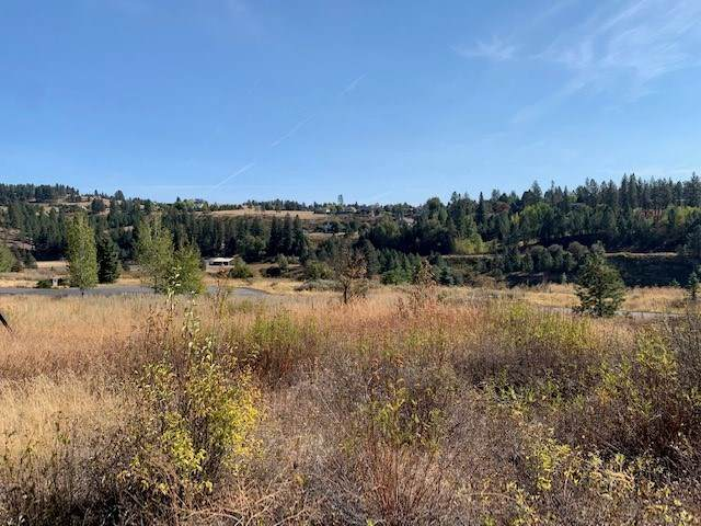 11320 S Fairway Ridge Ln, Spokane, WA 99224 (#202023201) :: Prime Real Estate Group