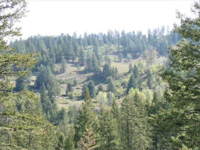 995 L Gold Hill Rd, Kettle Falls, WA 99141 (#202023781) :: Parrish Real Estate Group LLC