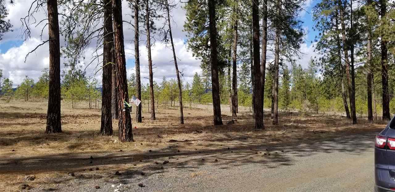 6487 Fir Drive Way - Photo 1