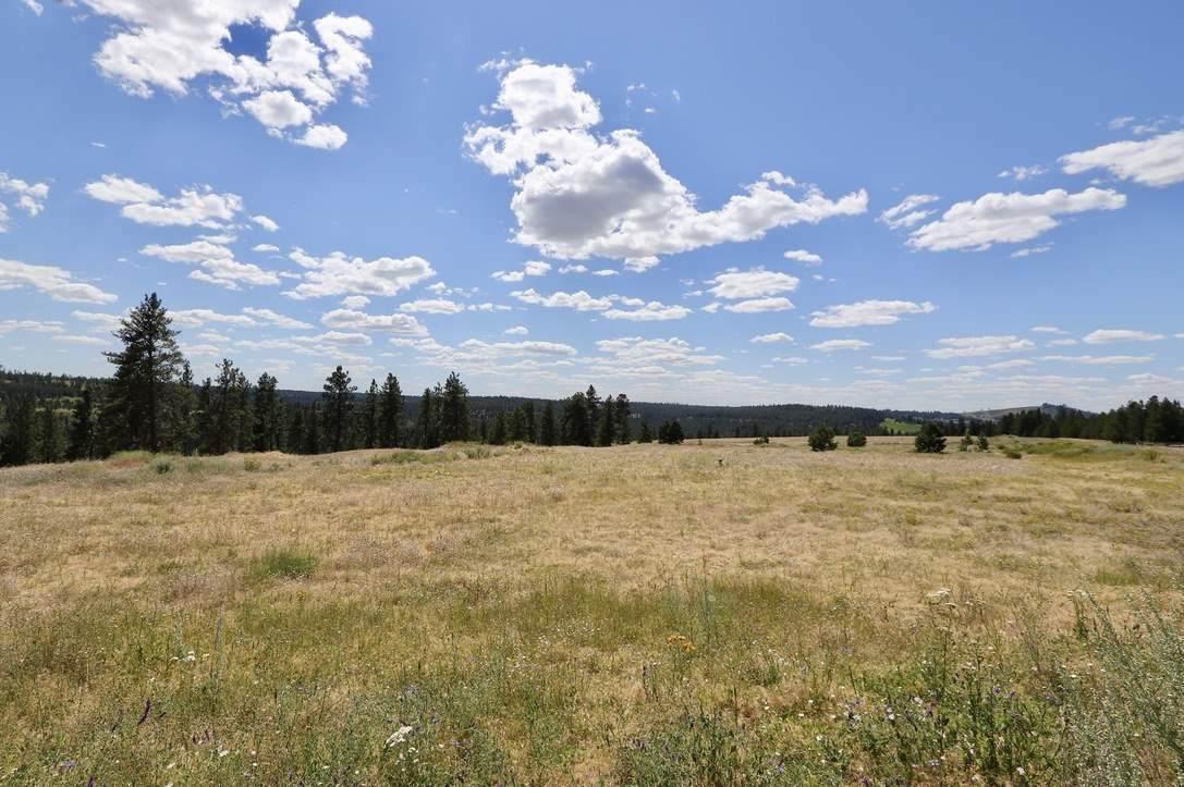5025 Latah Ridge Ln - Photo 1