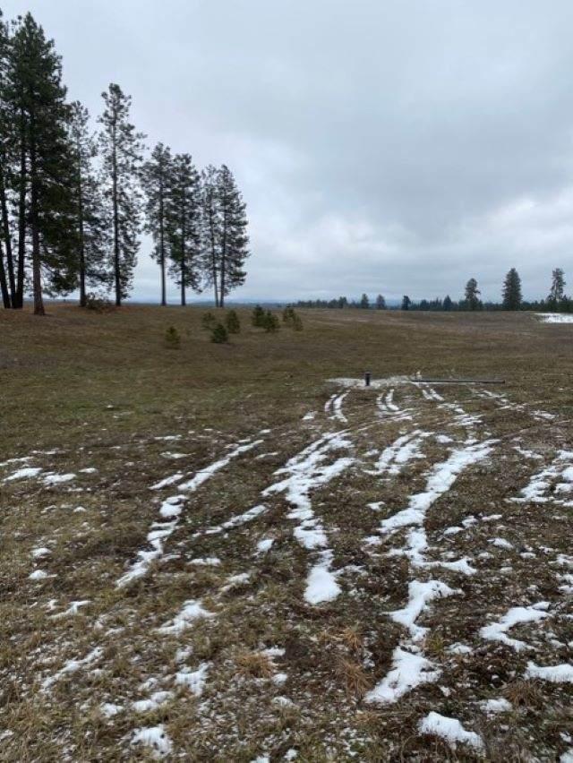 xxxx-A N Hardesty Rd, Elk, WA 99009 (#202110600) :: The Hardie Group