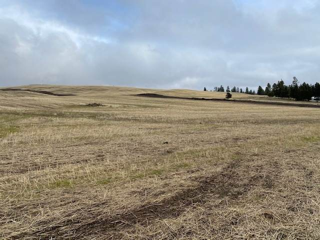 15xxx W Silver Lake Lot F Rd, Medical Lake, WA 99022 (#202110673) :: Northwest Professional Real Estate