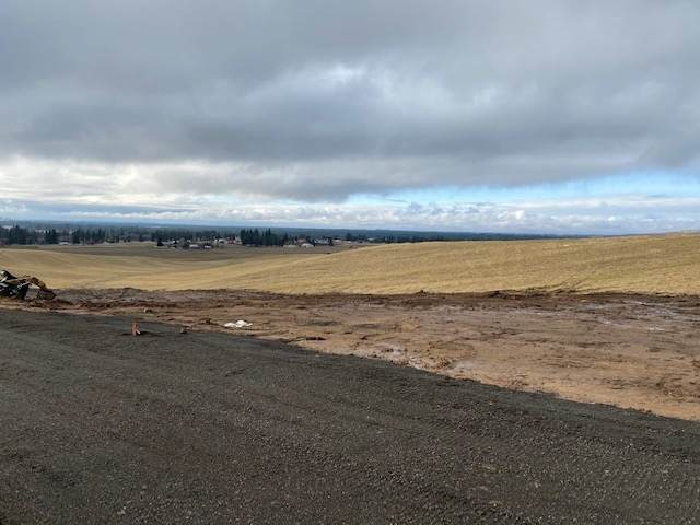 15xxx W Silver Lake Rd Parcel J Rd, Medical Lake, WA 99022 (#202110677) :: The Hardie Group