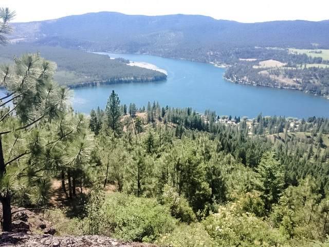 6663 Saddle Mountain Way Saddle Mountain, Deer Park, WA 99006 (#202110757) :: Elizabeth Boykin & Keller Williams Realty
