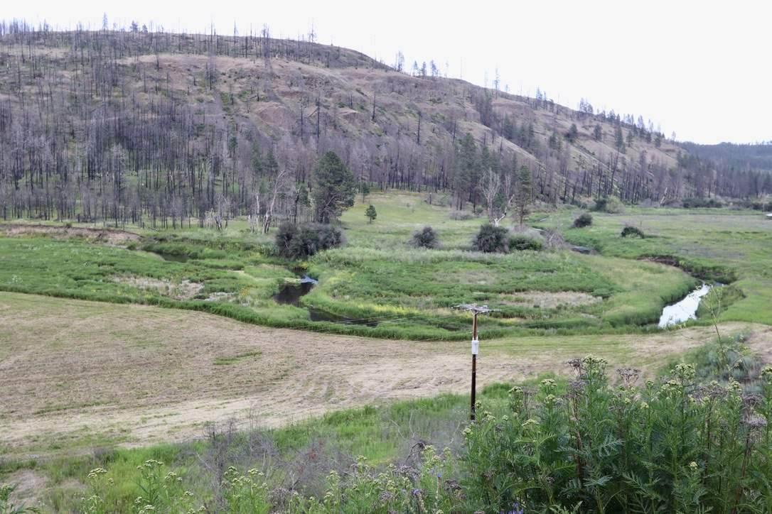 18018 Latah Creek Rd - Photo 1