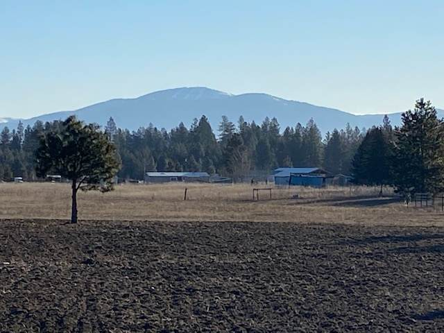 000 W Sandpiper Rd, Deer Park, WA 99006 (#202111374) :: Inland NW Group