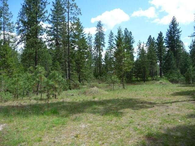 Lot 27 Palmer Ln, Chewelah, WA 99109 (#202111578) :: Top Agent Team