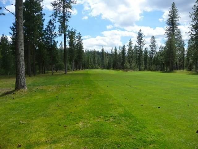 Lot 28 Palmer Ln, Chewelah, WA 99109 (#202111585) :: The Spokane Home Guy Group