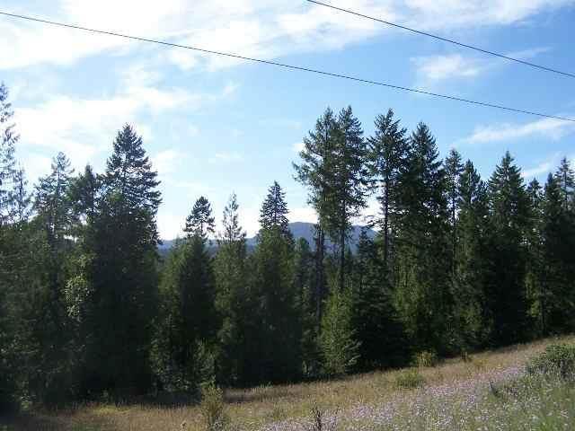 Lot 3 Schlegel Ranch Rd, Ione, WA 99139 (#202113287) :: Northwest Professional Real Estate