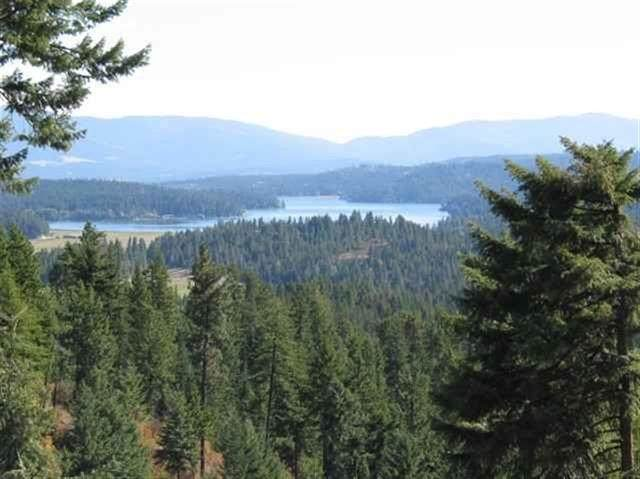 NNA Singing Hills Rd, Newman Lake, WA 99025 (#202113849) :: Top Spokane Real Estate