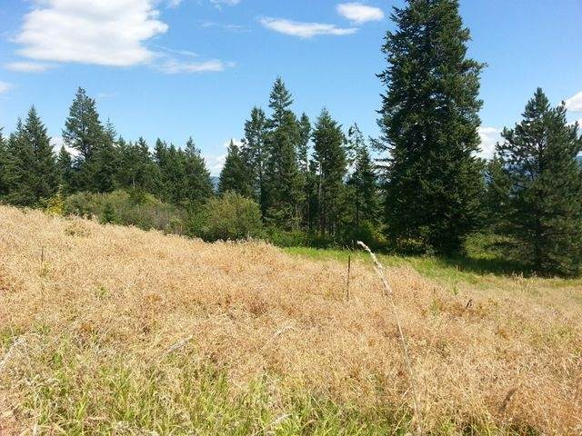 3378 G Hill Loop Rd, Kettle Falls, WA 99141 (#202114070) :: Northwest Professional Real Estate