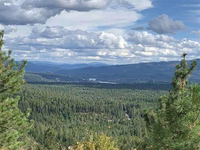 00000 Rocky Mountain Rd, Newport, WA 99156 (#202114912) :: Heart and Homes Northwest