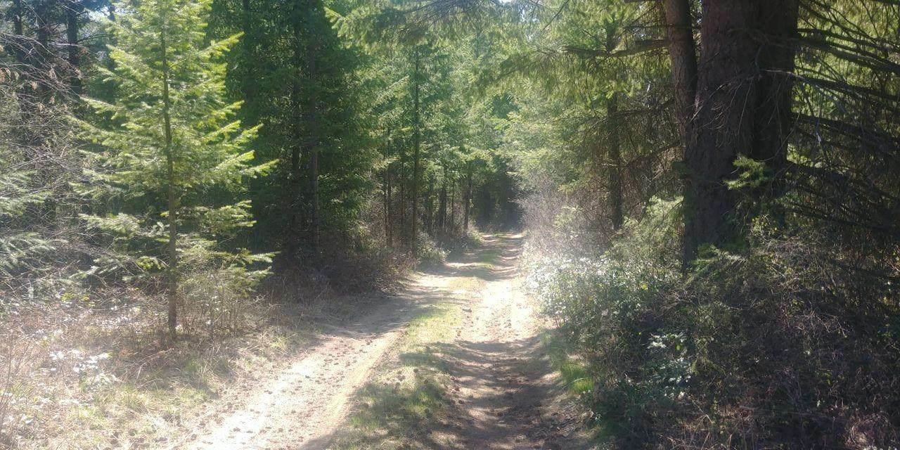 122 Stone Mountain Way - Photo 1
