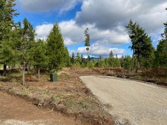 411 Happy Trails Ln, Newport, WA 99156 (#202119908) :: Prime Real Estate Group
