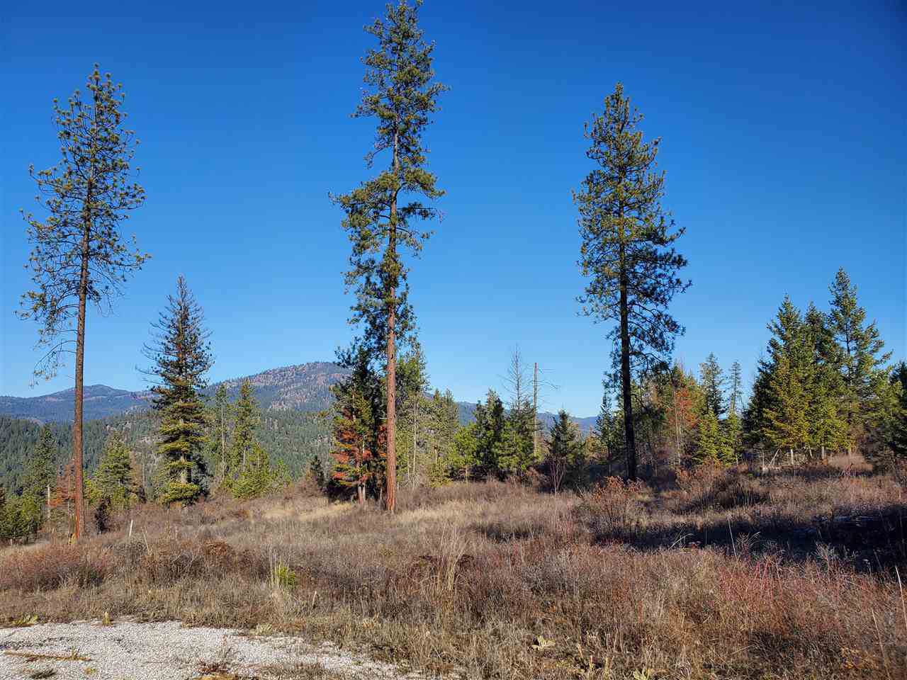 Lot 27 Crest 1 Palmer Loop - Photo 1