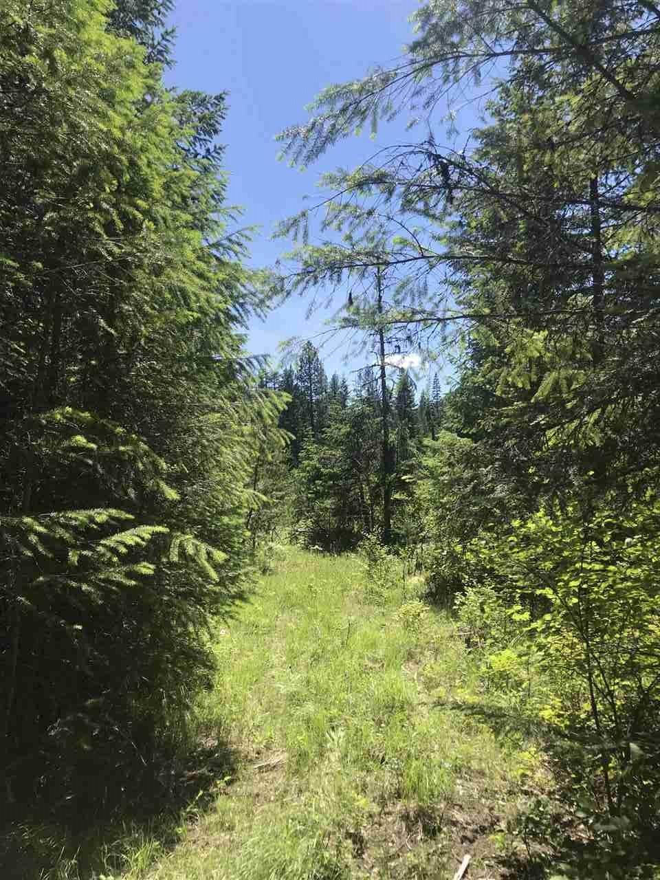 125 Calispel Trail Loop - Photo 1