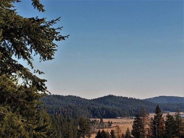 xxxxx N Cougar Ln Parcel A, Newman Lake, WA 99025 (#202025126) :: Top Spokane Real Estate