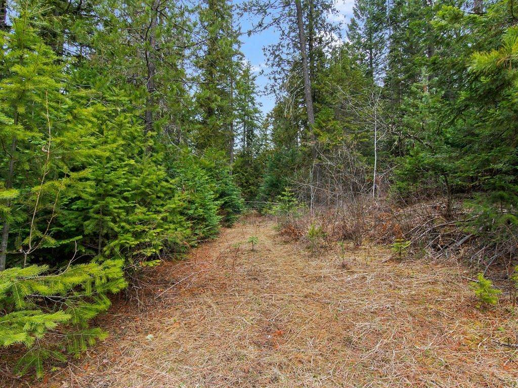 1081 Tacoma Creek Rd - Photo 1