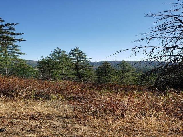 NKA Meadow View Ln - Photo 1
