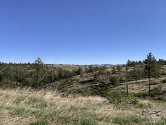 Lot 2 Vista Overlook Short Plat Ln, Davenport, WA 99122 (#202115371) :: Cudo Home Group