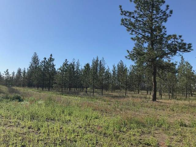 5742  Lot 1 Corkscrew Canyon Rd - Photo 1