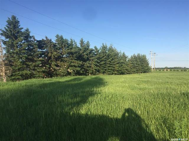 18 West Park Drive, Battleford, SK S0M 0E0 (MLS #SK841636) :: The A Team