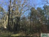 0 Hawkinsville Road - Photo 1