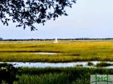 216 Fish Hawk Lane - Photo 26
