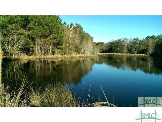 0 Lake No No Road N, Midway, GA 31320 (MLS #167170) :: The Sheila Doney Team