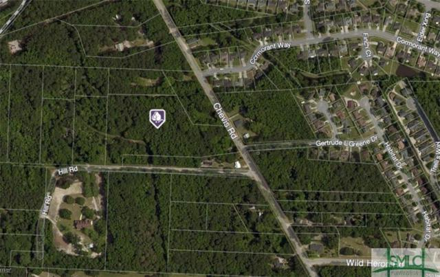 855 Chevis Road, Savannah, GA 31419 (MLS #176579) :: The Arlow Real Estate Group