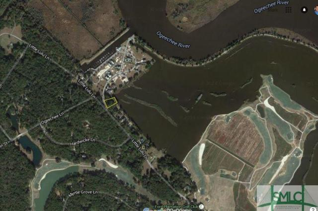 498 Little Lulu Lane, Richmond Hill, GA 31324 (MLS #179356) :: Coastal Savannah Homes