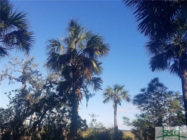 75 Wild Thistle Lane, Savannah, GA 31406 (MLS #185238) :: The Arlow Real Estate Group