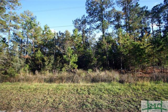 0 Cattle Hammock Road, Midway, GA 31320 (MLS #187480) :: The Robin Boaen Group