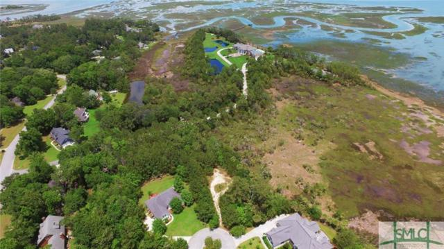 75 Wild Thistle Lane, Savannah, GA 31406 (MLS #190336) :: The Arlow Real Estate Group